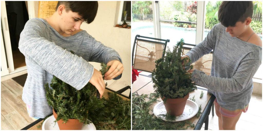 Mini Christmas Tree Decoration